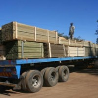 GG Timbers