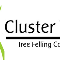 Cluster-West